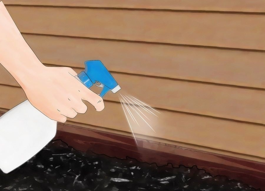 Remove termite access by filling cracks in your wooden house